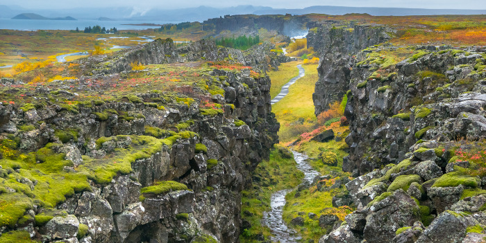 Are the tectonic plates shifting in the DRSP market?